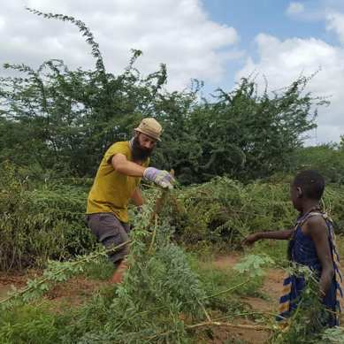 Volunteer moving branches in Tanzania