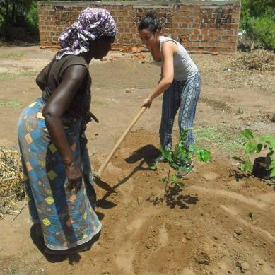 Volunteer planting trees in Tanzania