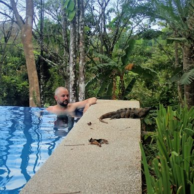 Justin in an infinity pool with an iguana on the side of the pool deck