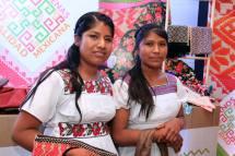 Indicadores Sobre La Mujer Rural Indgena En Xico