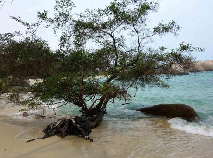 Pantai Penyabon