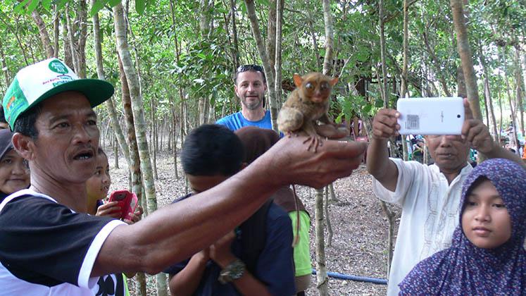remise en liberte tarsius Go Belitung