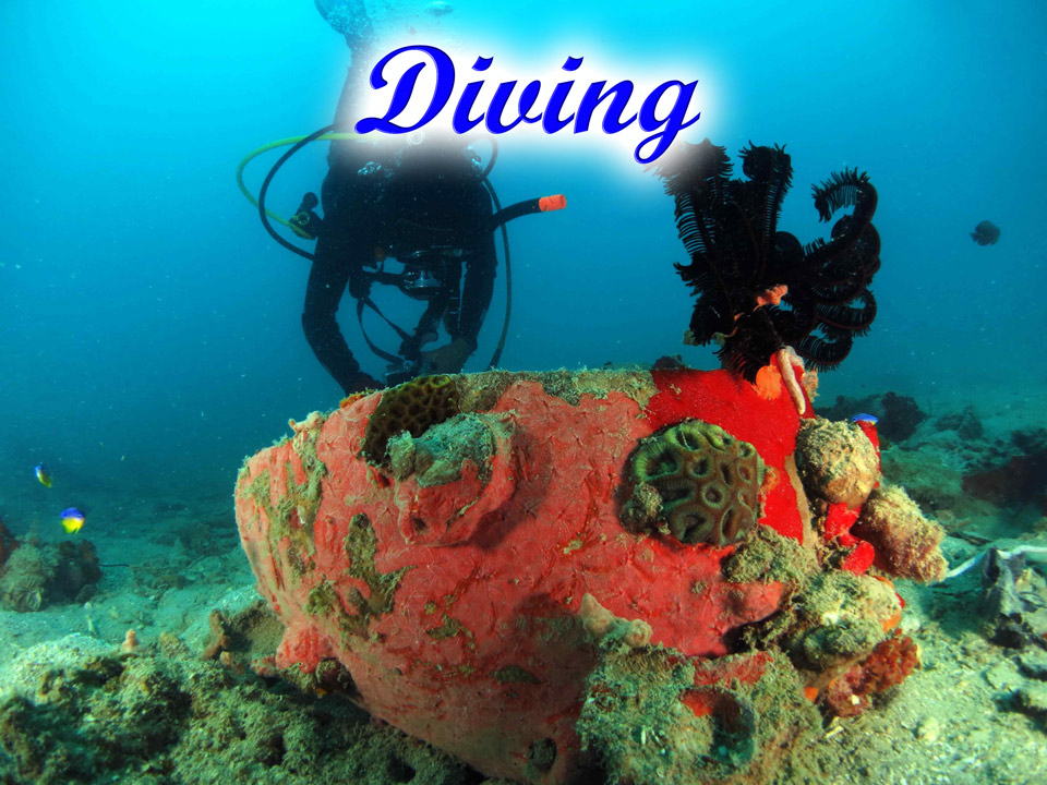 Diving-GoBelitung Belitung Indonesia