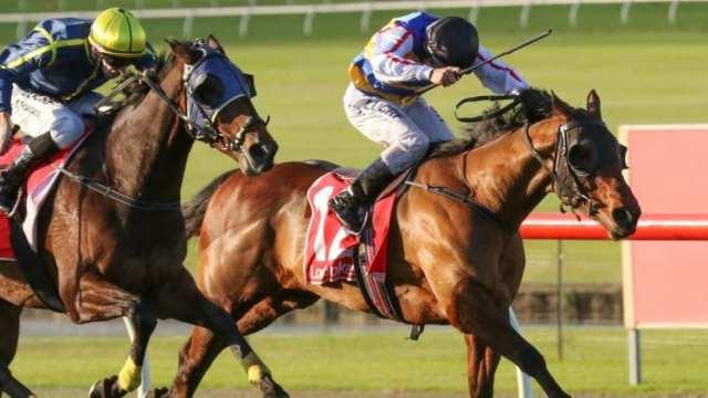 Caulfield Horse Racing Tips - Saturday, June 29th 2019 | GoBet