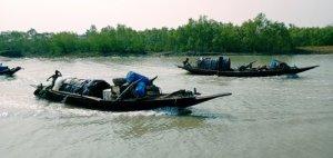 Bonnicamp Sundarban Tour Package