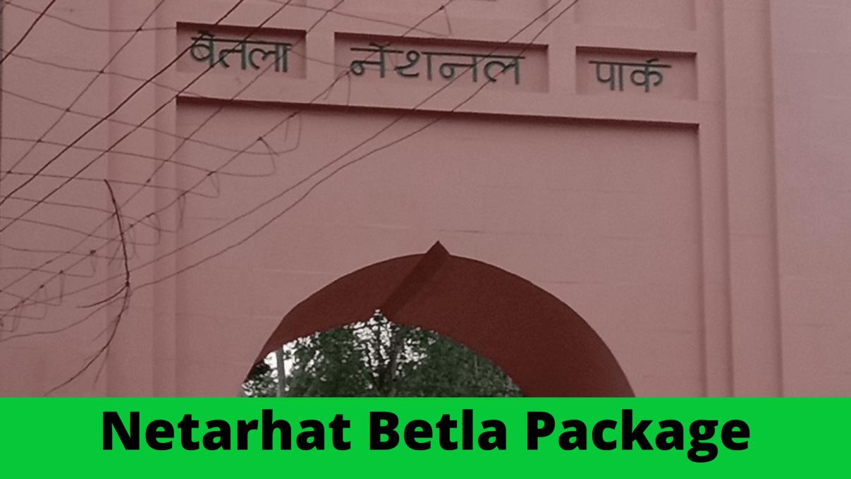 Netarhat Betla Package