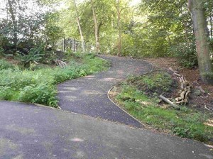 steep-cycleway-link-pic
