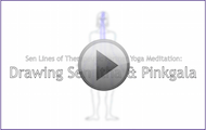 online-yoga-certification-sen-lines