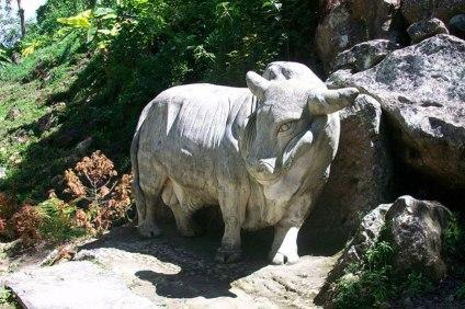 Zoologica Piedra