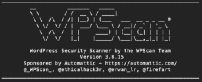 How to Use WP Scan
