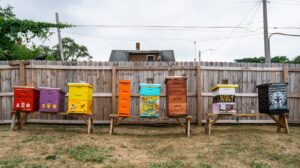 Row of colorful beehives in a city setting