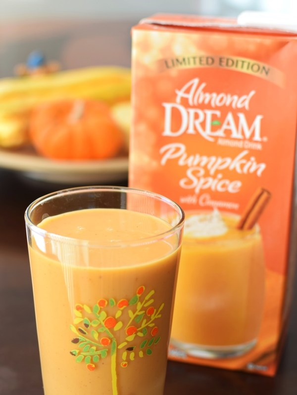 DairyFree Dream Holiday Beverages Nog and More Review