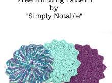 Almost Lost Washcloth - Free Knitting Pattern by Simply Notable