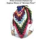 Scrappy Granny Shawl - Free Crochet Pattern by Regina Weiss