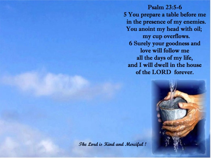 Image result for psalms 23:5-6