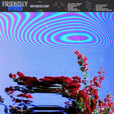 Friendly Fires – Inflorescent (Casablanca Records/Polydor)
