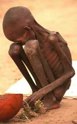 https://i0.wp.com/www.godlovespeople.com/starving_child-sudan2.jpg