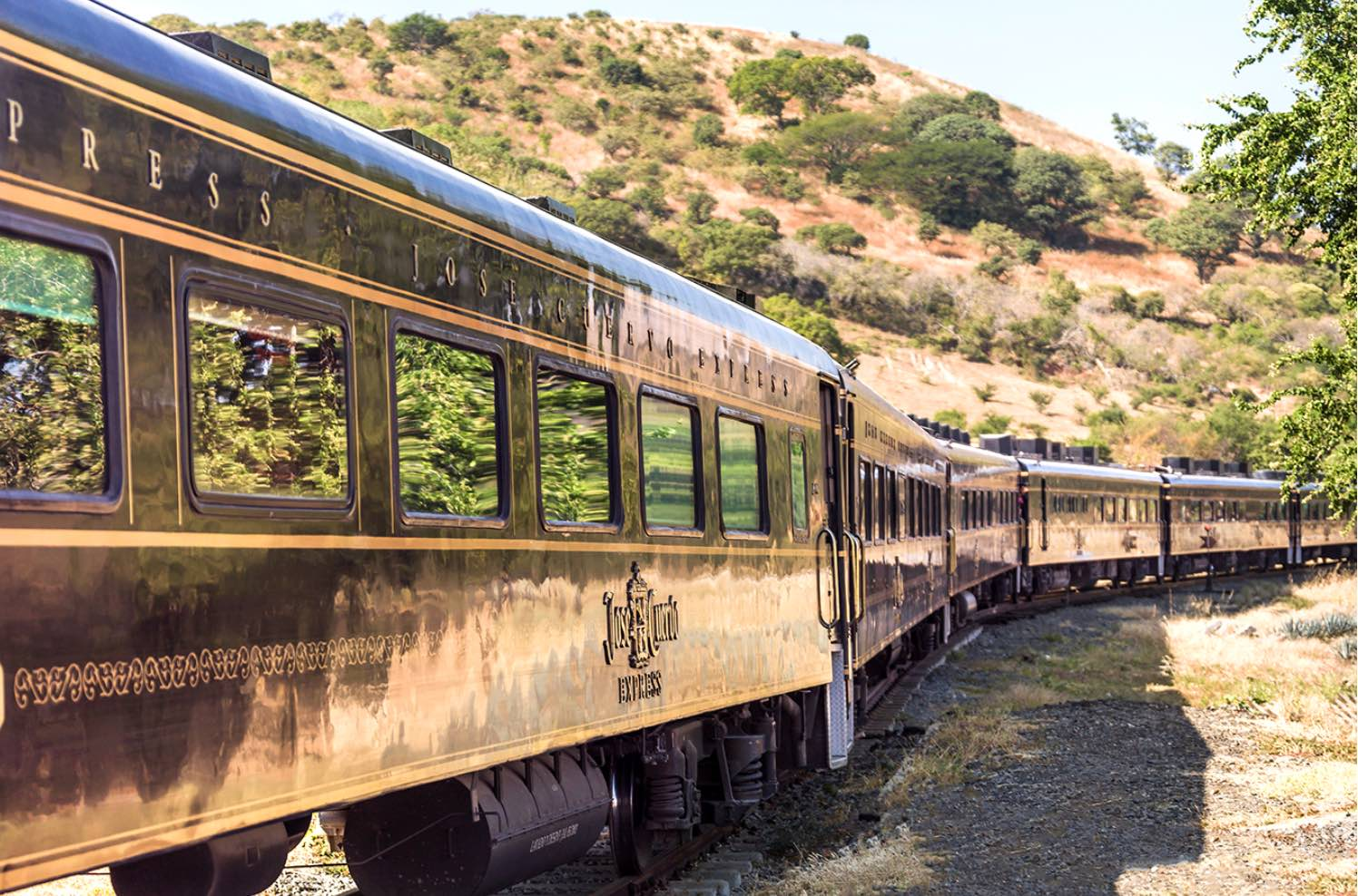 Mexico's Scenic Luxurious $160 'Tequila Train' Ride