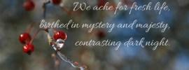 We ache for fresh life, contasting dark night quote by Katie M. Reid for godsizeddreams.com