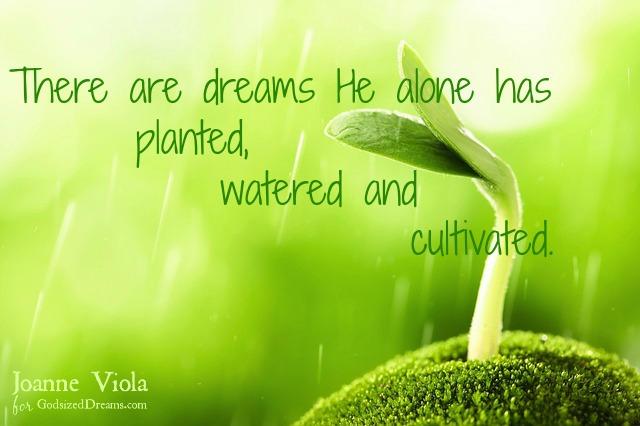 He Plants & Cultivates Our Dreams
