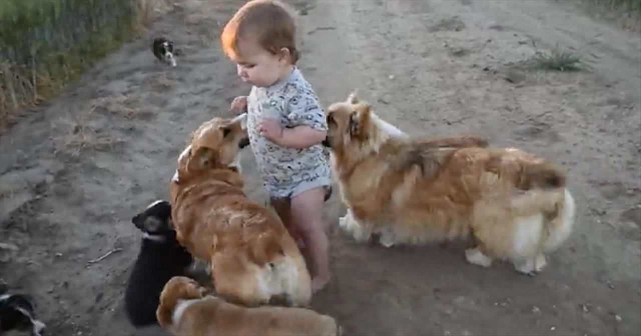 baby boy plays with