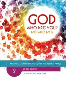 GOD Who Are You? AND Who Am I? Knowing and Experiencing God by His Hebrew Names - the Main Workbook $16.99