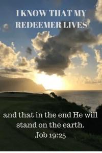 Job s divine revelation