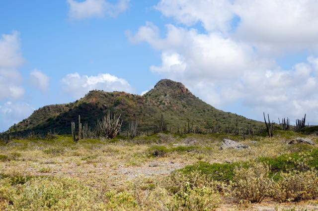 highest peak at Washington Slagbaai National Park