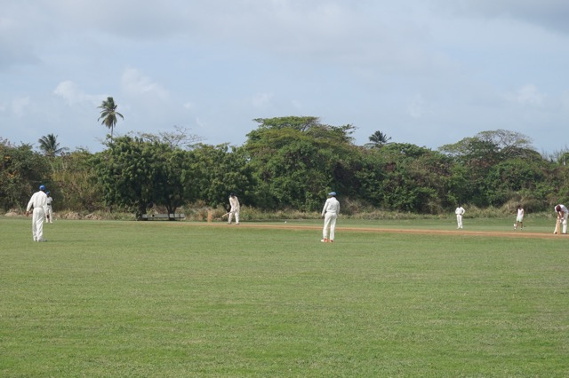 barbados cricket