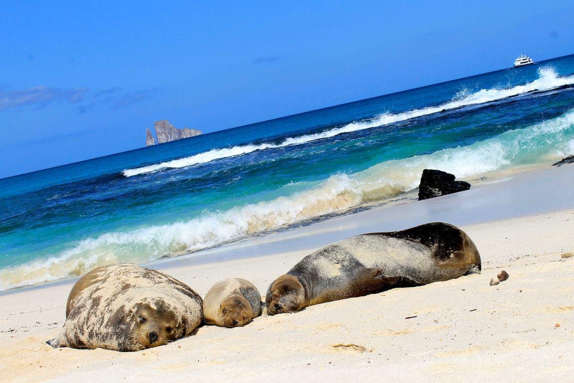 Ecoventura_Galapagos