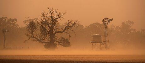 Ist doch schön, wenn allen etwas wärmer wird, oder? Sandsturm in Australien.