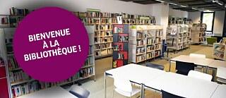 goethe institut frankreich