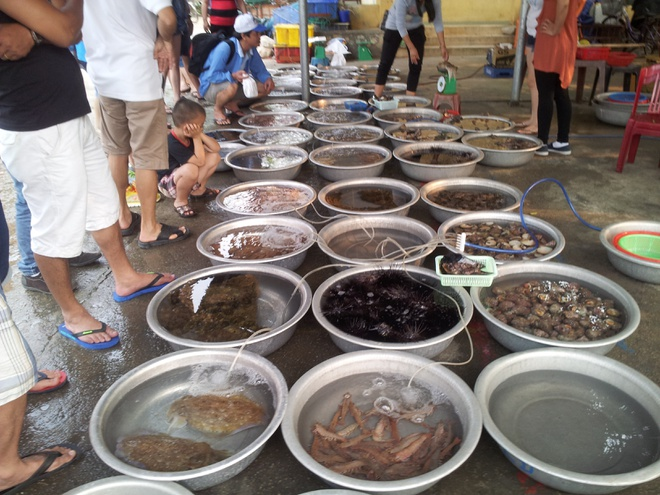 Fresh seafood market in Cu Lao Cham