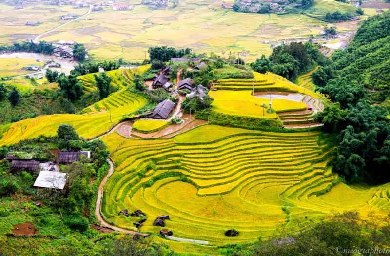 The terraced fields in Sapa, Vietnam.jpg (1) - Top 7 beautiful destinations for honeymoon in Vietnam