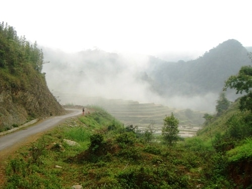 The road to Son - Ba - Muoi villages.