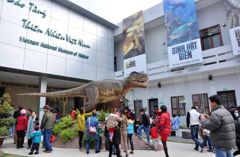 Vietnam National Museum of Nature