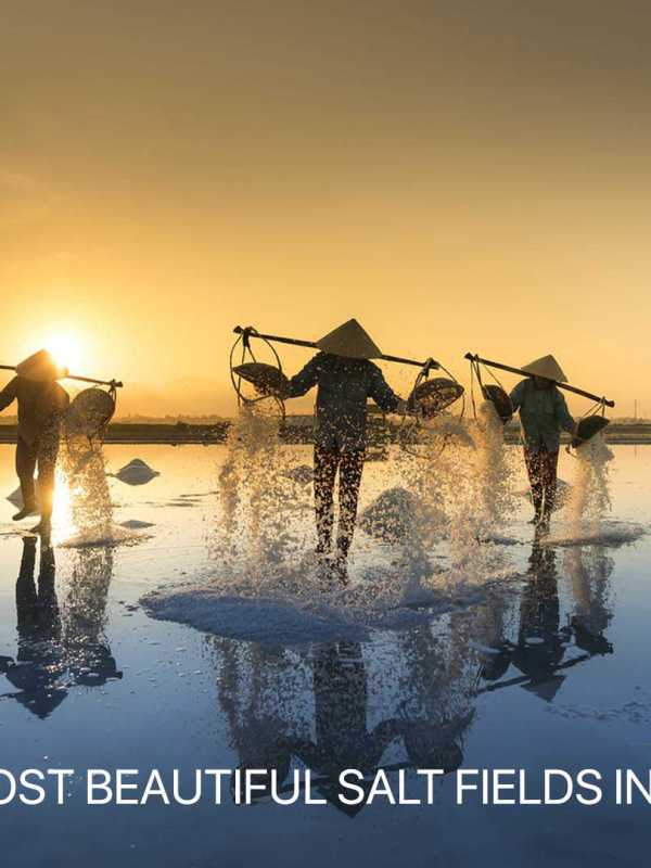 Most beautiful salt fields in Vietnam