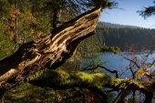 Certovo lake (Devil's lake)