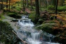 Javor creek
