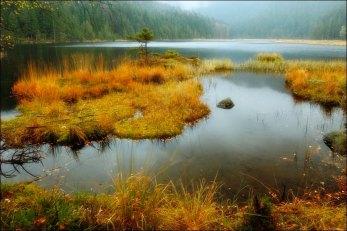 The Great Arbor lake