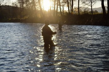 Evening fly fishing