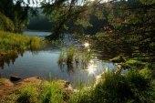 Laka lake