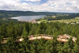 Tree park, Lipno lake