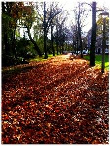 Hollandse Herfst