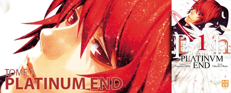 avis tome 1 platinum end