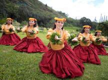 Kauai Hula | Hula on Kauai | Go Hawaii