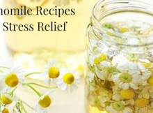 4 Chamomile Recipes For Stress Relief (1)