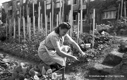 um 1946/47 Leipzig, Krochsdorf Grabeland zwischen den Häuserzeilen