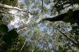Ar-condicionado inverter não agride o meio ambiente