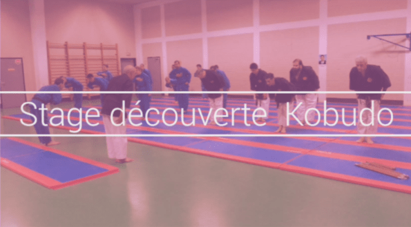 stage decouverte kubudo